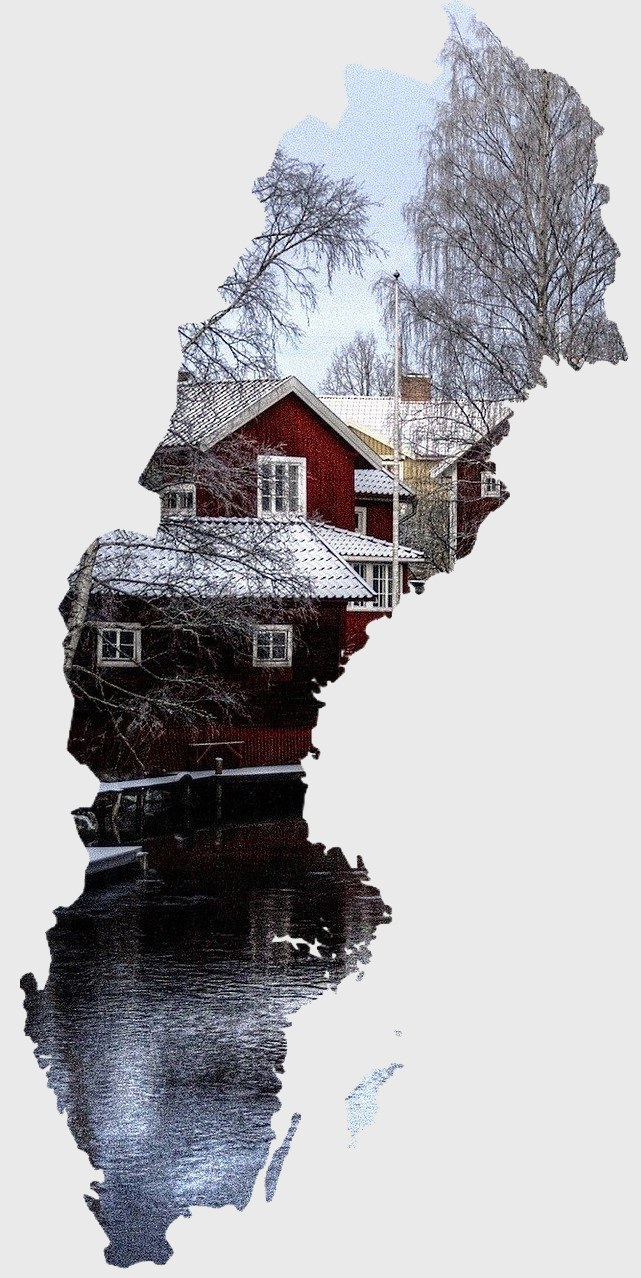 Plecari Suedia